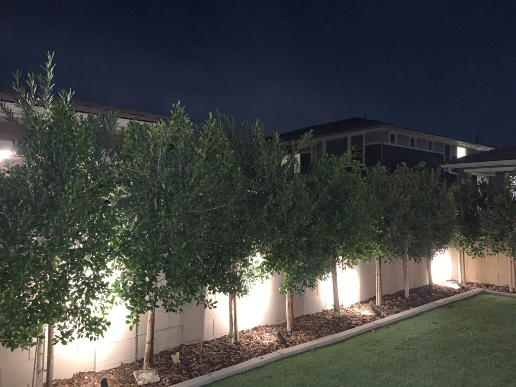 Low-voltage landscape lighting for outdoor use.