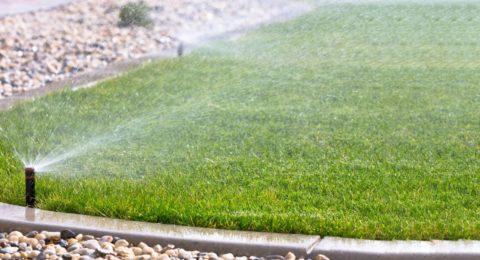Lawn sprinkler system.